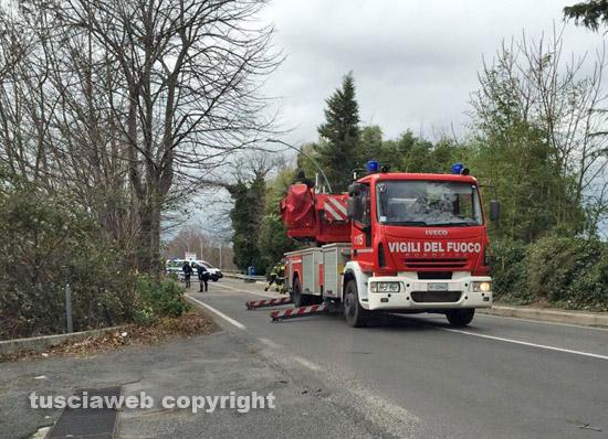 Un albero caduto- Intervento dei vigili del fuoco