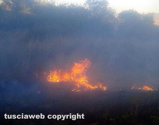 Quattro ettari di sterpaglie in fiamme