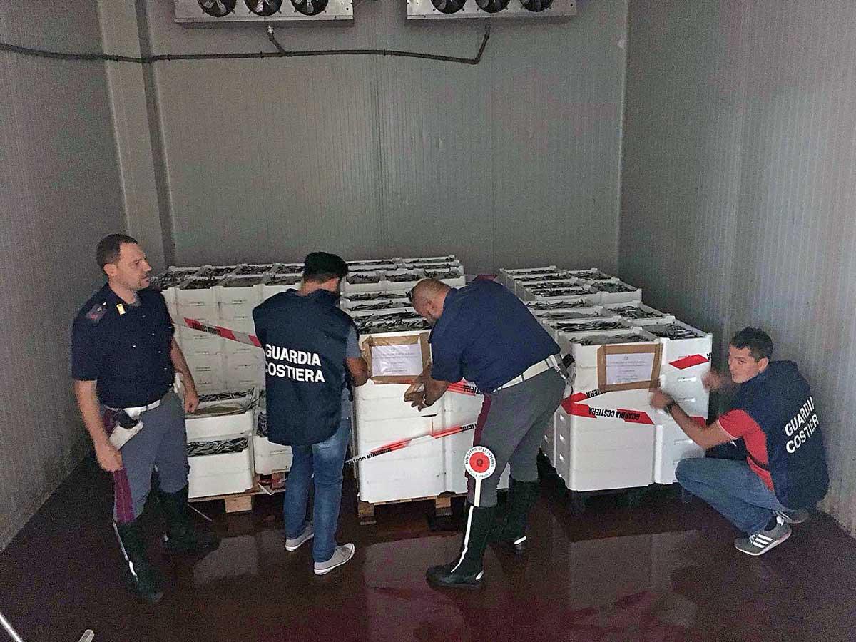 Sequestrate due tonnellate di pesce non tracciato