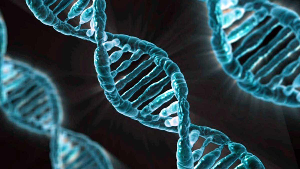 Tumori: scoperta proteina che previene mutazioni cancerose