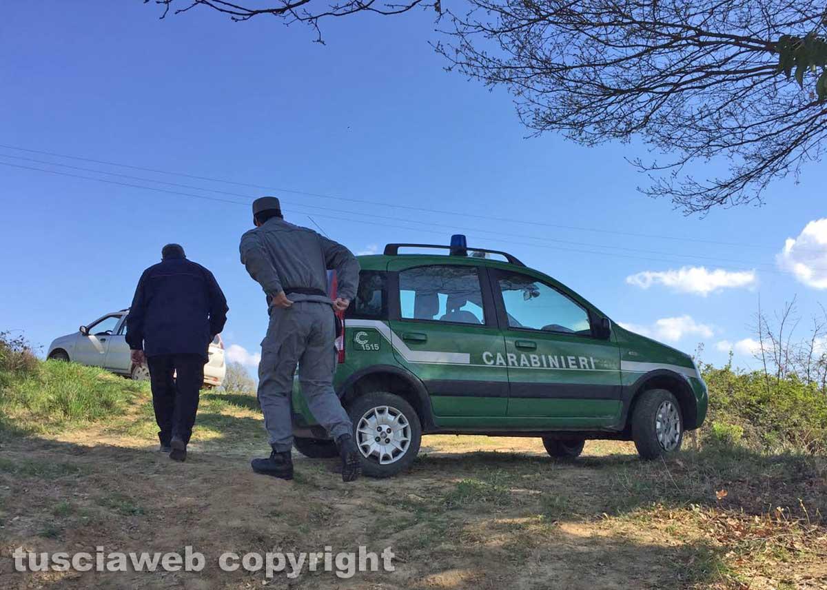Incidente sul lavoro a Ficulle, boscaiolo muore travolto da albero