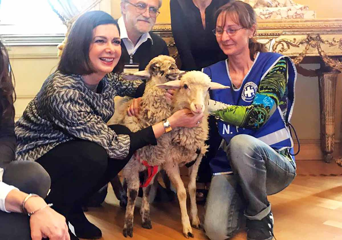 Boldrini adotta due agnellini, le ha battezzate Gaia e Gioia