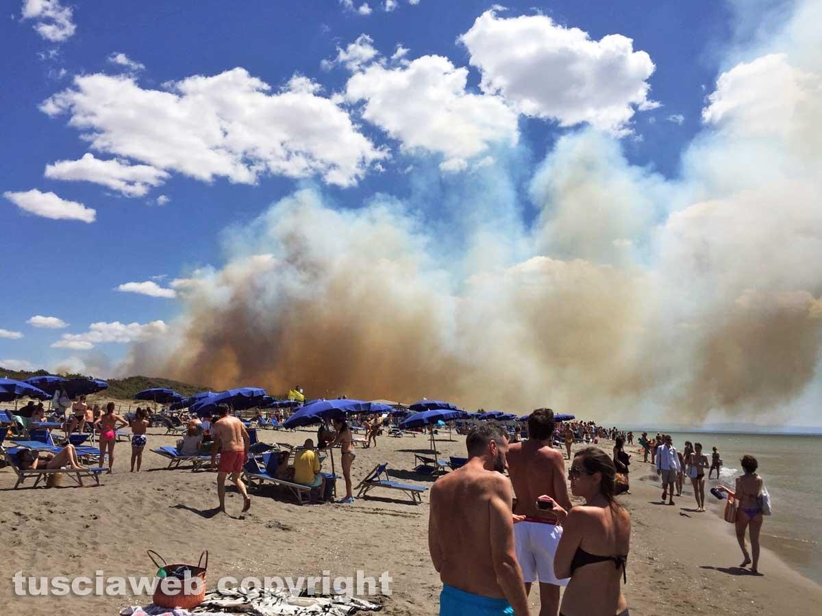 Incendio a Capalbio: evacuati due campeggi e uno stabilimento