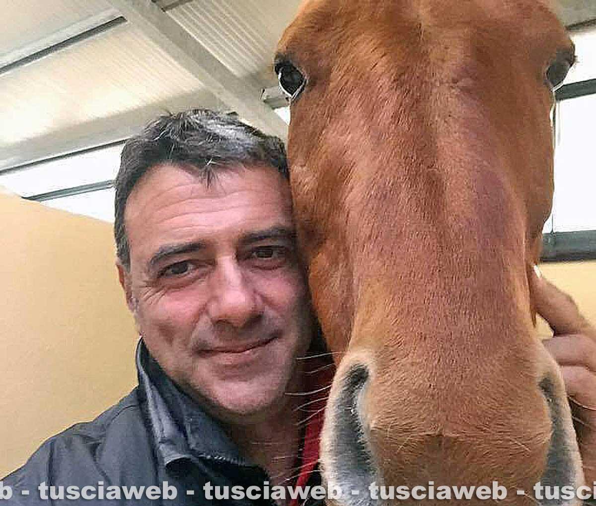 Cavalli scambiati, veterinario viterbese a processo