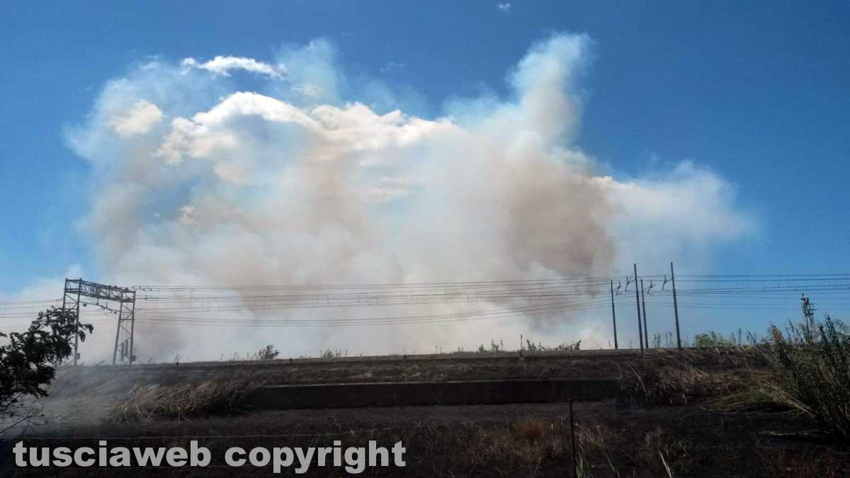 Un'altra giornata di fuoco: evacuati due campeggi a Capalbio